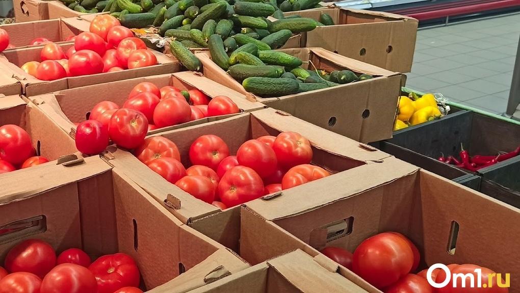 Аграриям в Омской области выделят почти 24 миллиарда рублей на поддержку отрасли