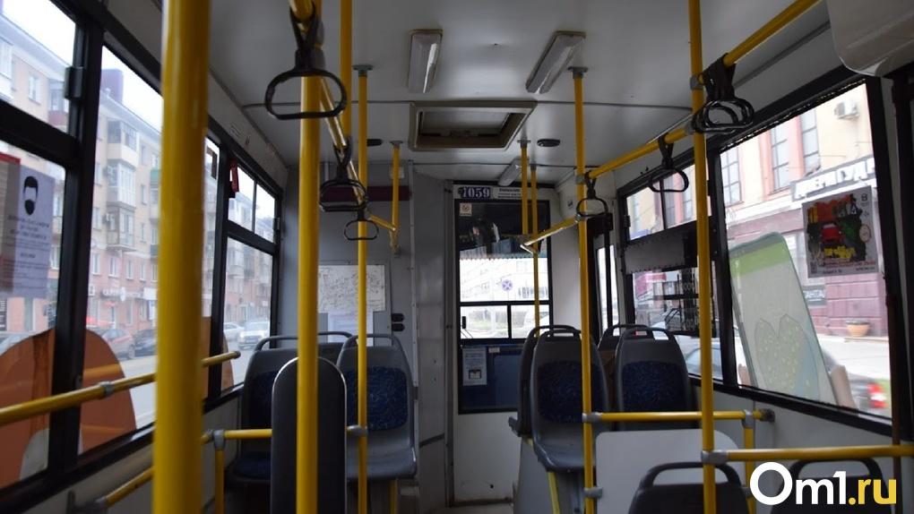 В Омске из-за метели слетел с дороги автобус с 34 пассажирами