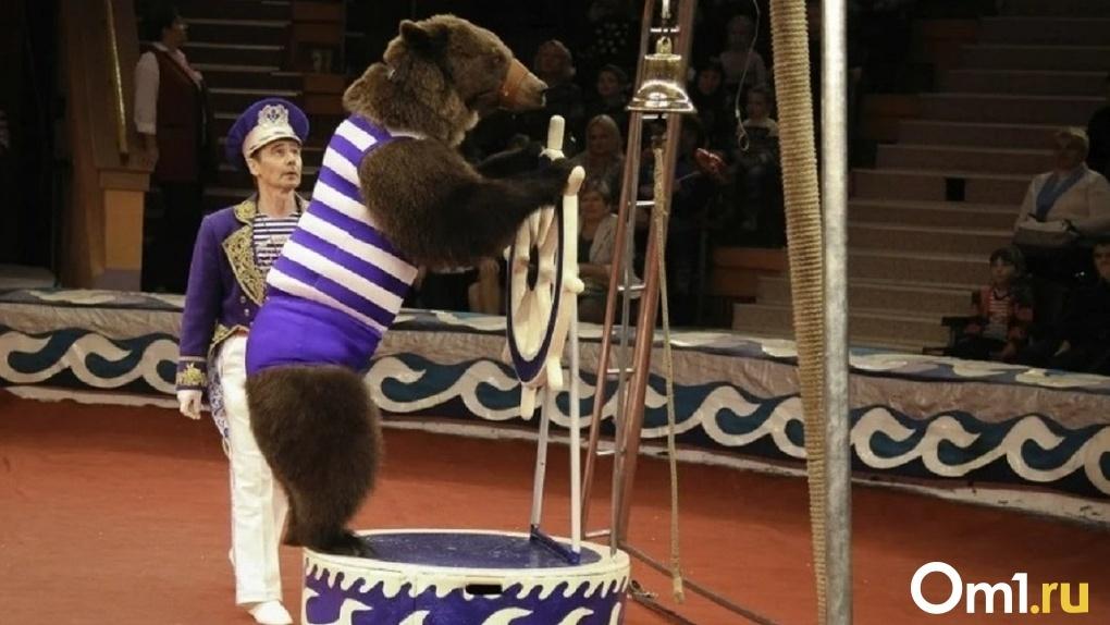 Животные и дрессировщики Новосибирского цирка застряли в Казахстане из-за коронавируса