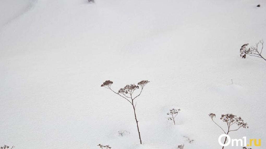 В одном из районов Омской области выпал первый снег