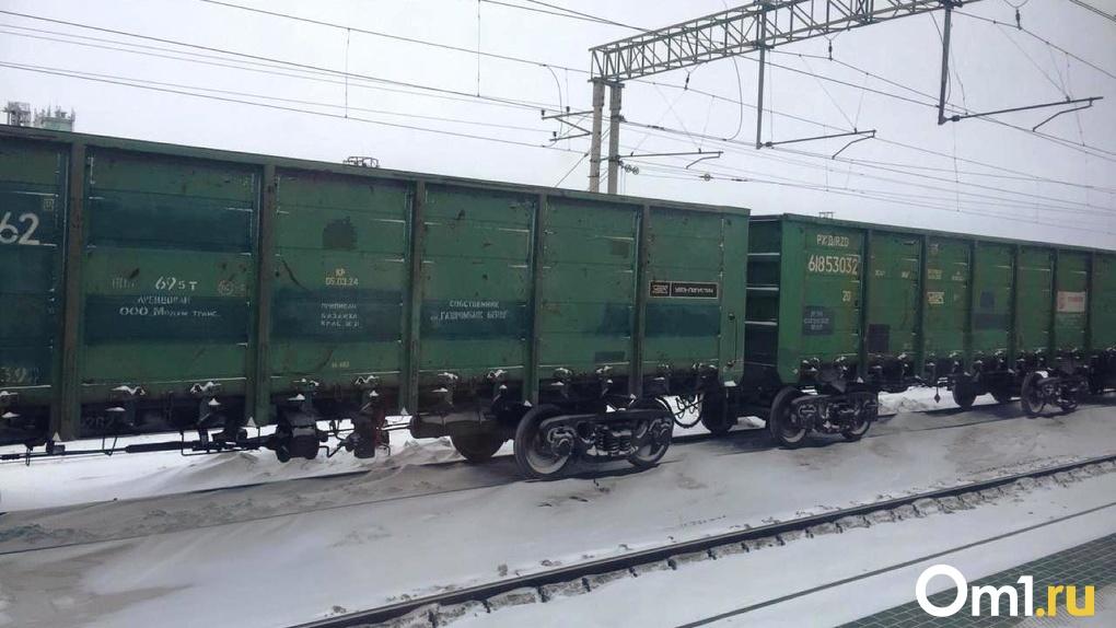 Сотрясение мозга и переломы: в Новосибирской области мужчина в наушниках попал под поезд