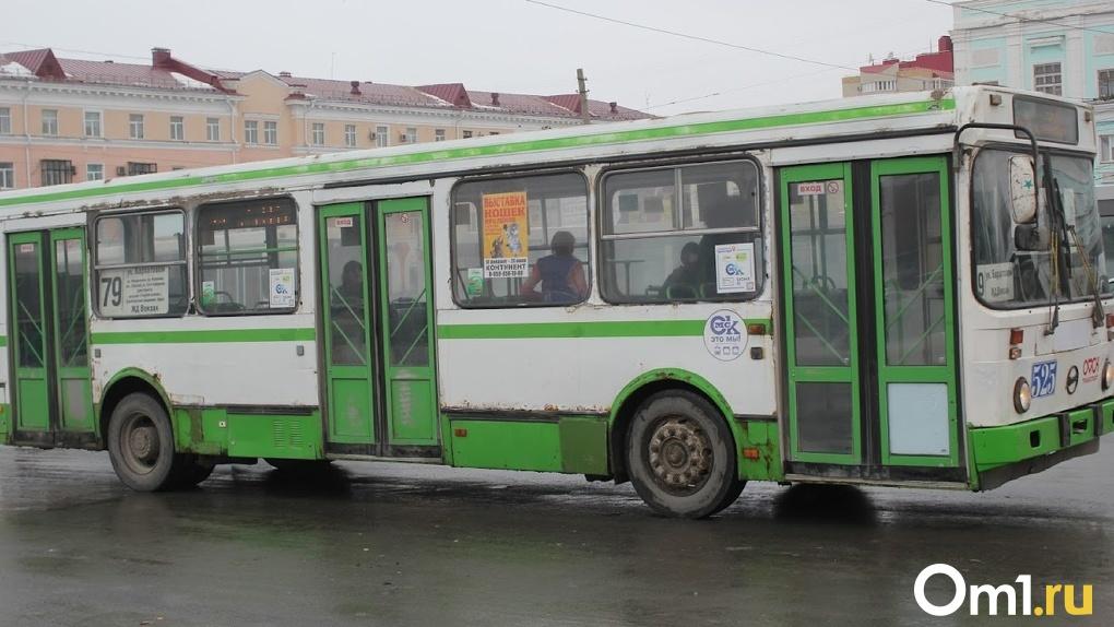 В Омске снова могут запустить общественный транспорт на Иртышской набережной