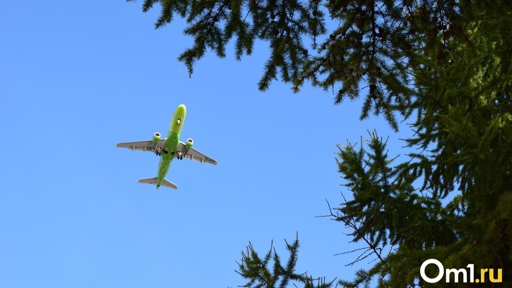 Стало известно, когда может возобновиться международное авиасообщение