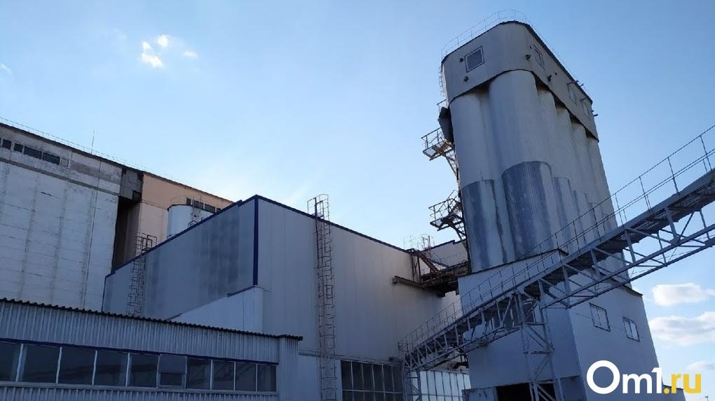 Количество выбросов за год в Омской области достигло 256 тысяч тонн