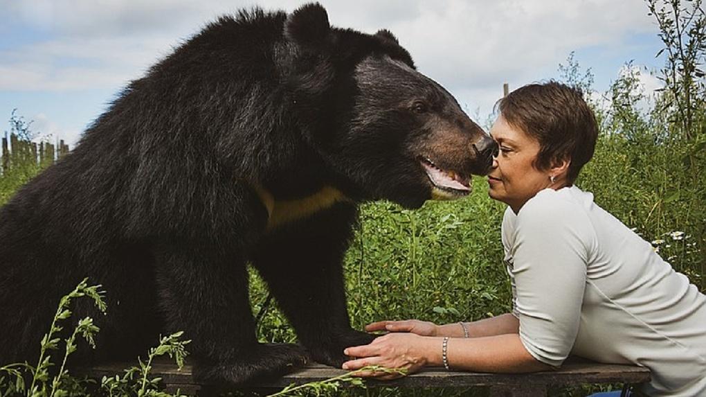 В Новосибирске дрессировщица ищет дом для знаменитых цирковых медведей