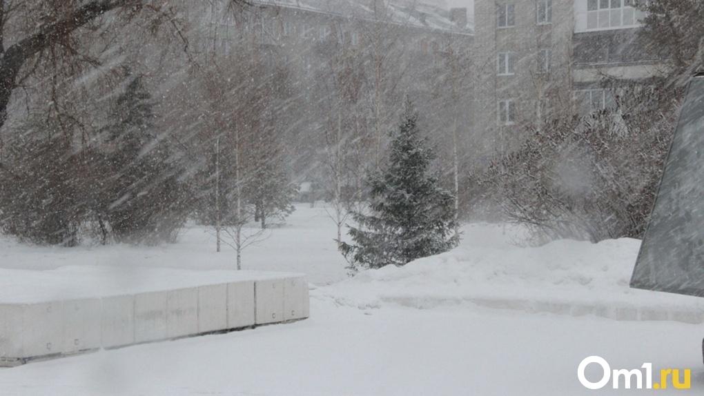 Температура воздуха в Омске сегодня опустится ниже, чем в Антарктиде
