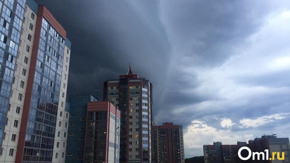 Конец жаре: дожди и грозы обрушатся на Новосибирск в начале рабочей недели