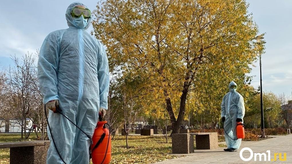 Коронавирус. Актуальные данные. Мир, Россия, Омск. 5 ноября 2020 года