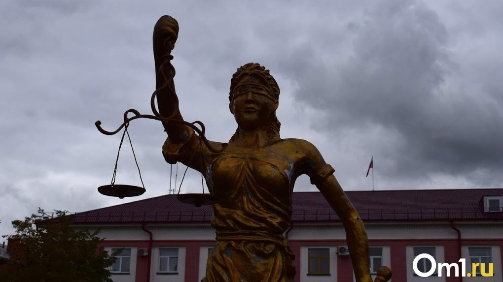 В Новосибирской области осудят мужчину, пытавшегося задушить четырёхлетнюю девочку