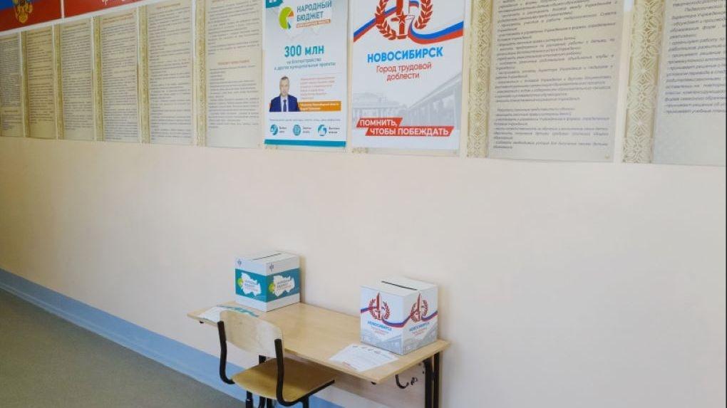 «Народный бюджет» и «Город трудовой доблести»: за что смогут проголосовать жители Новосибирской области?
