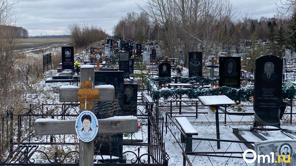 В Омске кладбищенские миллионы потратят на дезинфекцию школ