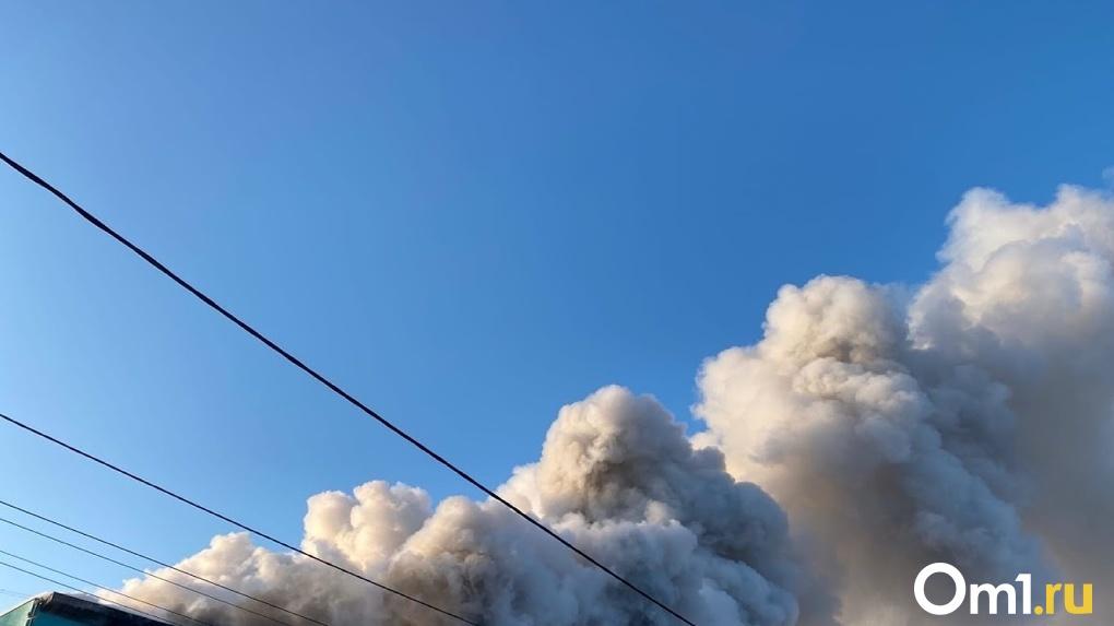 Самый крупный лесной пожар в Омской области ликвидировали