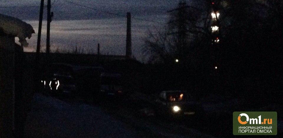 В Омске за гаражами нашли мёртвого новорождённого