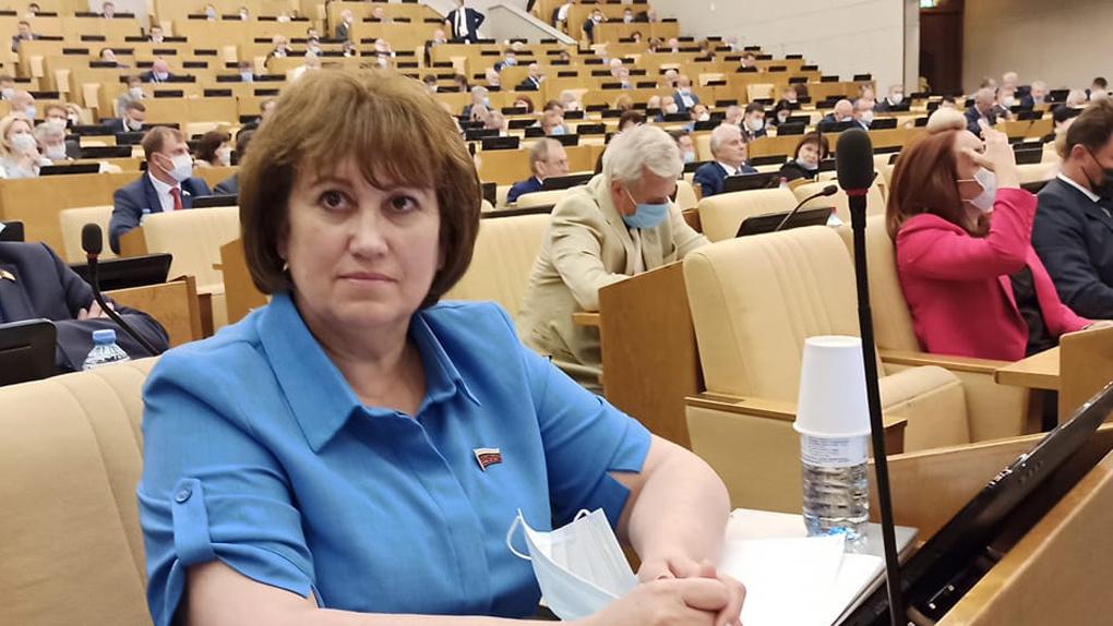 Дома топят дровами: депутат Госдумы раскритиковала газификацию в Новосибирской области