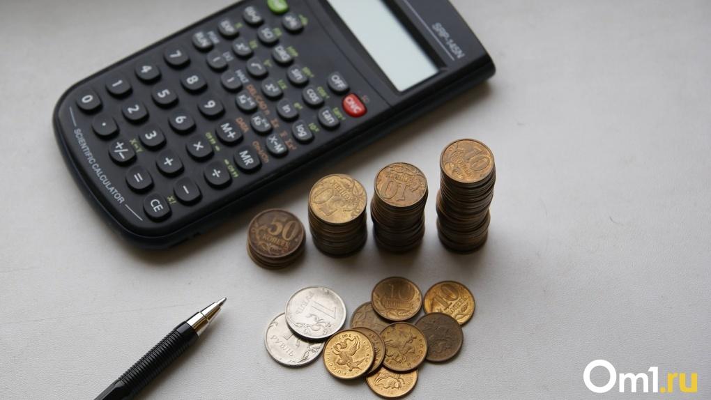 За год доход омских предпринимателей превысил 48 миллиардов рублей