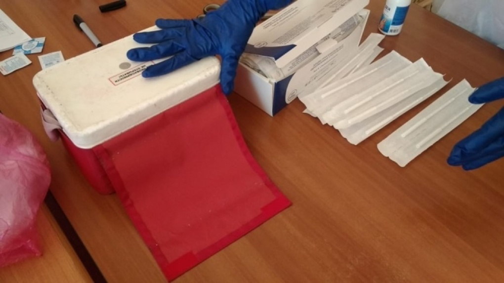 Члены омского избиркома, работающие на голосовании, сдали тесты на коронавирус