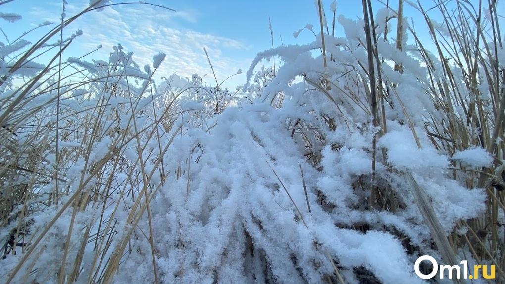 Сибирские морозы. В Омске со следующей недели ожидаются -35 градусов