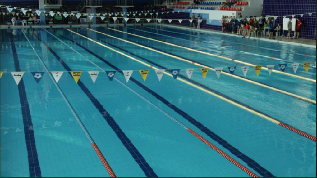 Новый бассейн появится к 2022 году в Новосибирске