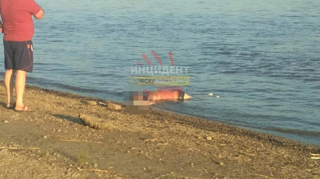В Советском парке на пляж вынесло тело человека