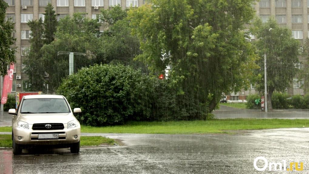 Переменчивую погоду прогнозируют синоптики на выходные в Новосибирске
