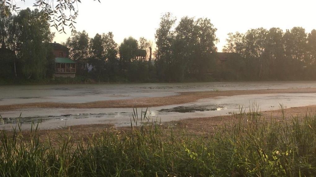 «Превратилось в лужу»: новосибирцы бьют тревогу из-за катастрофы на озере
