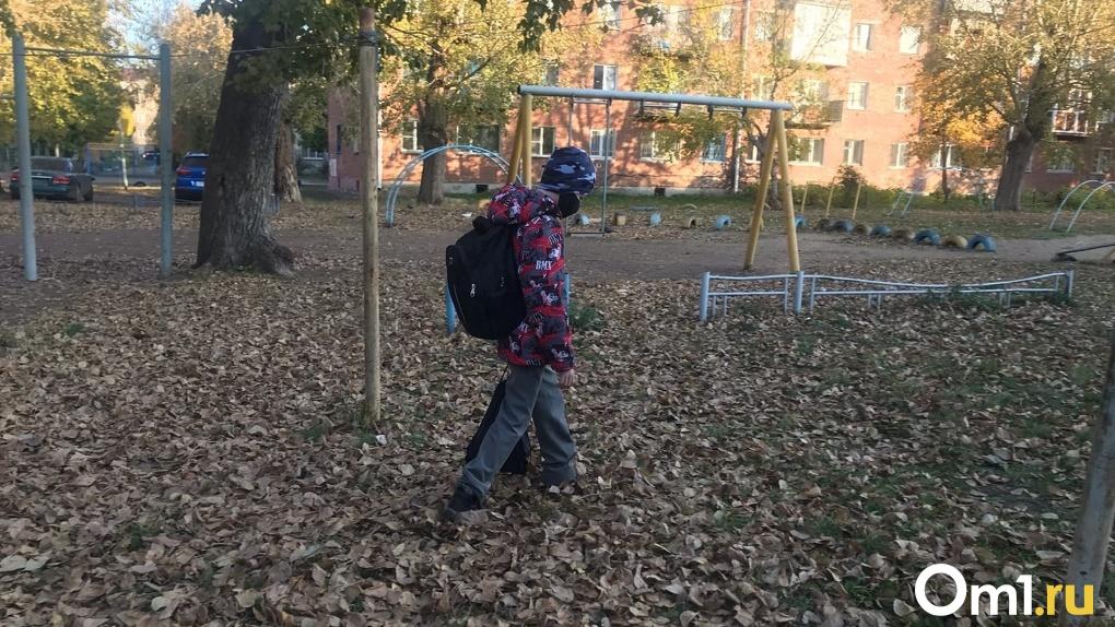 Пропустил день, неси справку. Законны ли новые требования омских школ и детских садов?