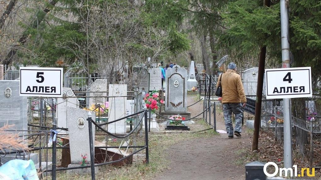Омич решил украсть ограждение с кладбища на глазах у полицейских