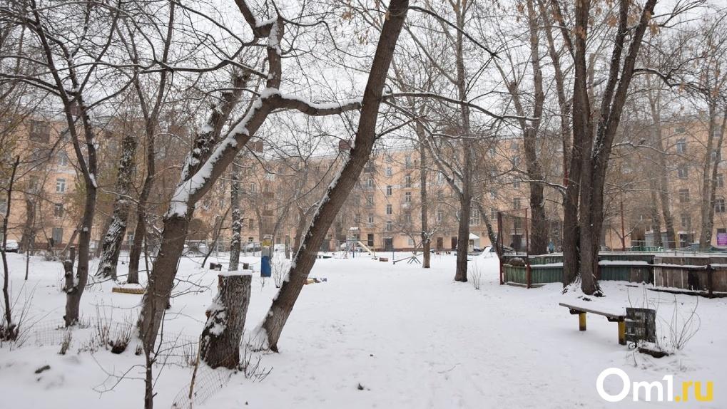 «Для ноября ситуация нетипична». Синоптики рассказали об аномальной погоде в Омской области