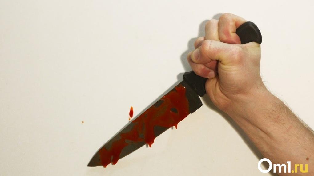 23 ножевых. Омич забрался в чужой дом и жестоко зарезал хозяйку, пока её муж был в огороде