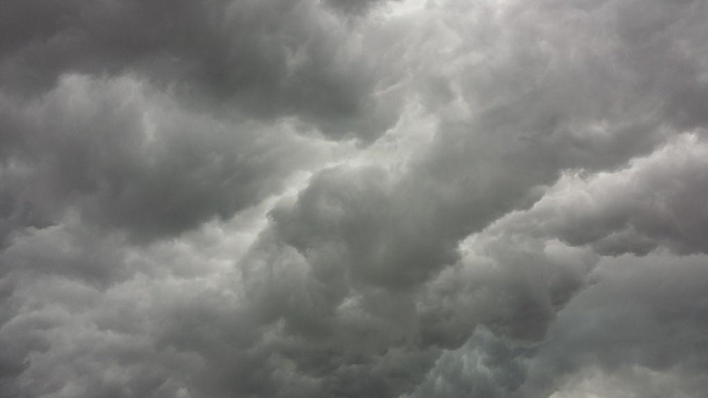 Щиты и деревья рухнут, провода оборвутся: на Новосибирск надвигается шторм