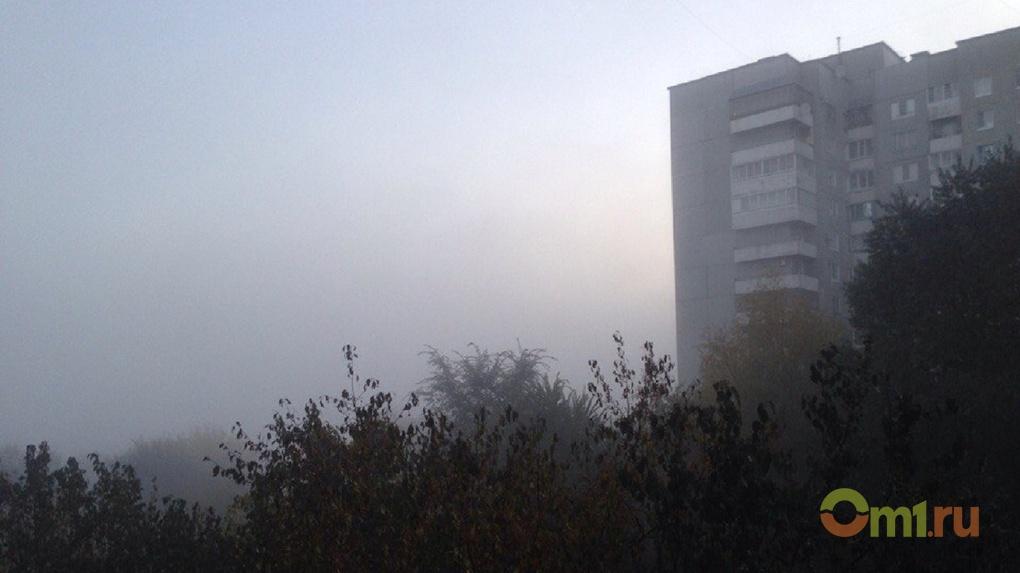 Омский Роспотребнадзор зафиксировал превышение в воздухе вредных веществ
