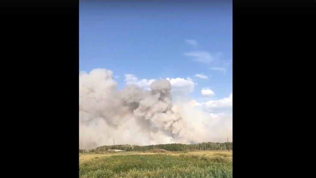 Район Новосибирской области окутал дым от лесного пожара