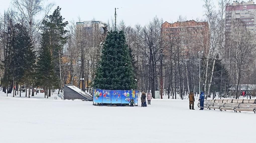 В Центральном парке Новосибирска начали украшать новогоднюю ёлку