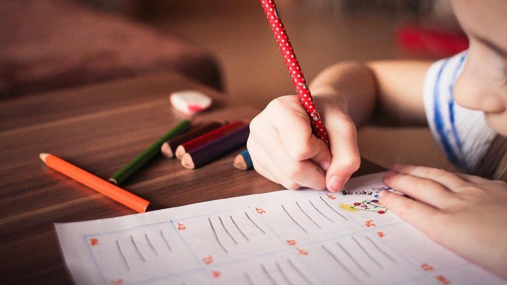 Омский оперштаб не исключил, что может перевести студентов и школьников на заочную форму обучения