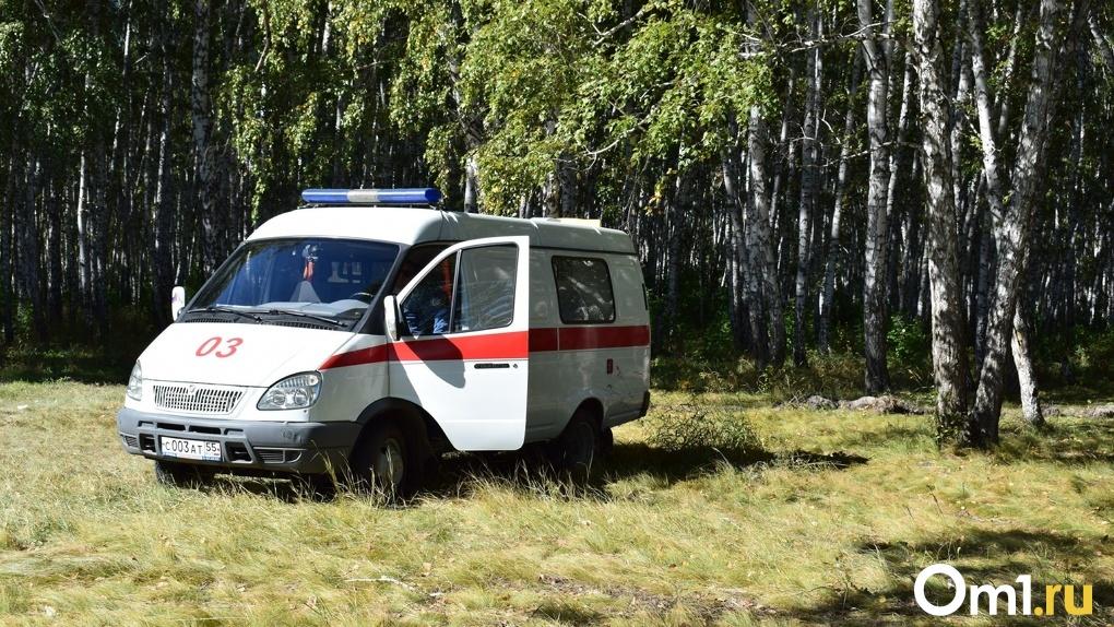 В Омской области на пустой дороге перевернулась иномарка. Есть жертвы