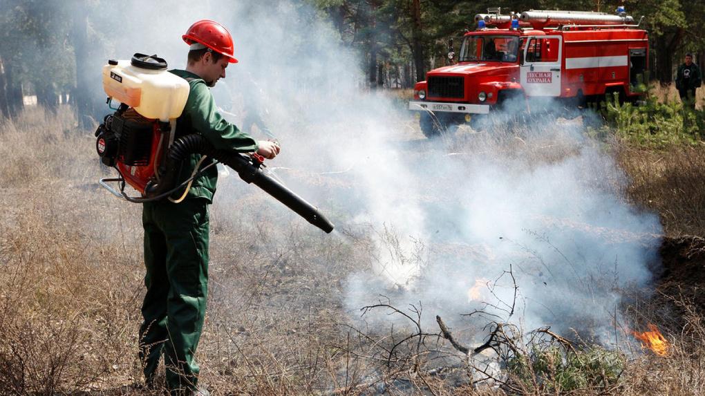 В Омской области на 85% изношена техника для тушения лесных пожаров