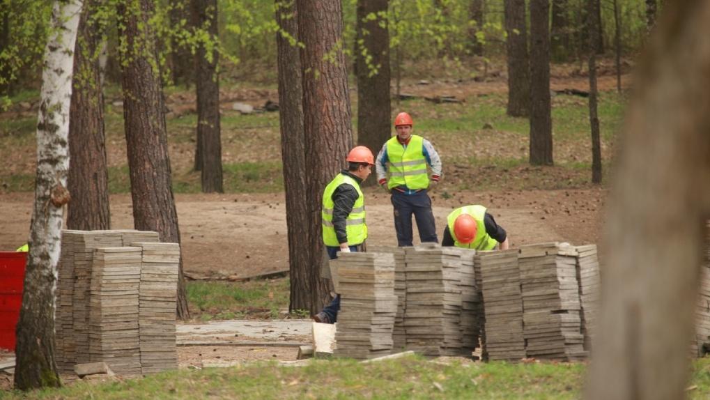 Названо время открытия Заельцовского парка в Новосибирске после реконструкции