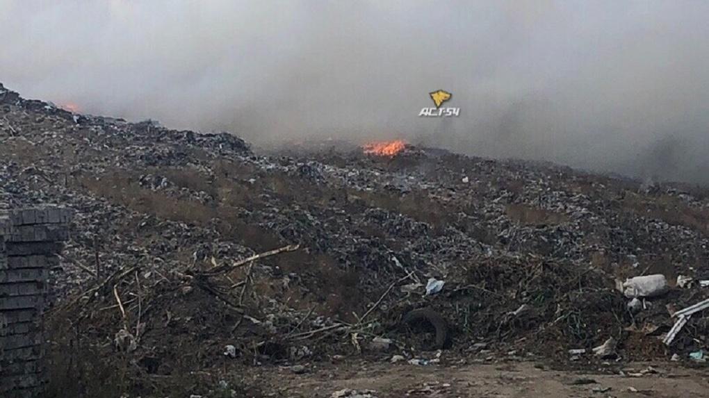 «Это биологический геноцид»: новосибирцы обратились к Владимиру Путину из-за пожара на мусорном полигоне