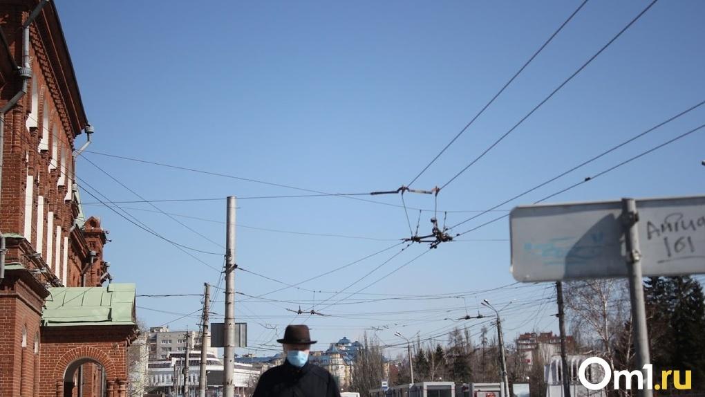 Заявление по поводу режима самоизоляции в Омске сделают 10 мая