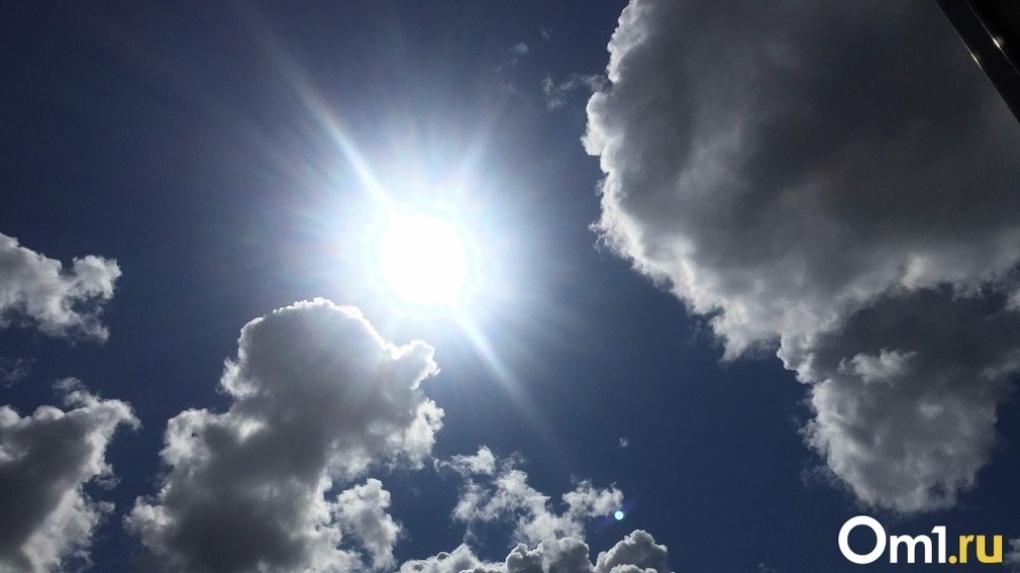 СРОЧНО! Аномальная жара продлится в Новосибирске до 12 августа