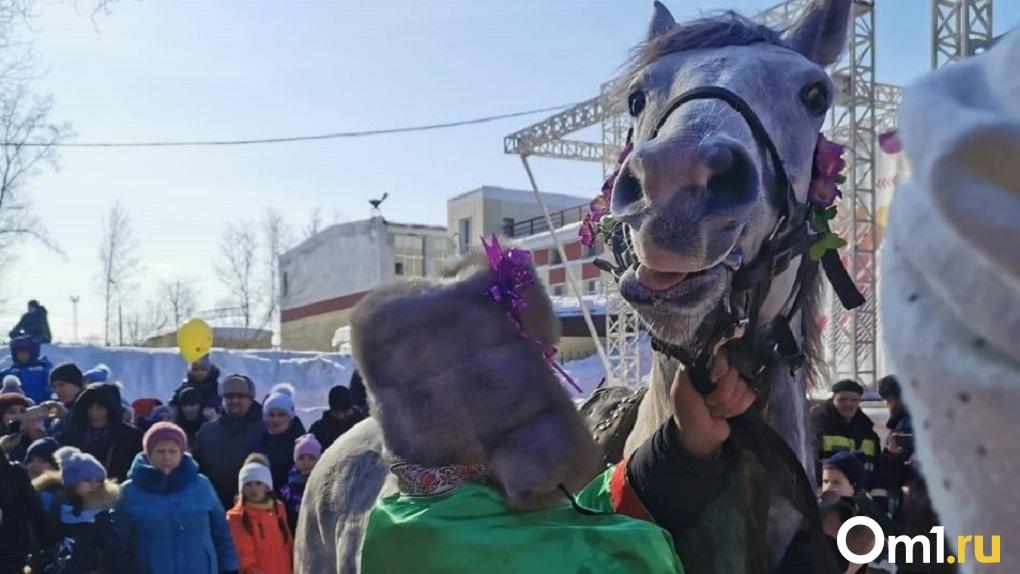 Блины, кони и экстремальный конкурс: 25 ярких снимков Масленицы в Новосибирске