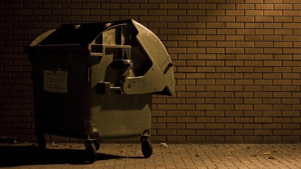 Депутат предрек Омску дефицит мусорных контейнеров