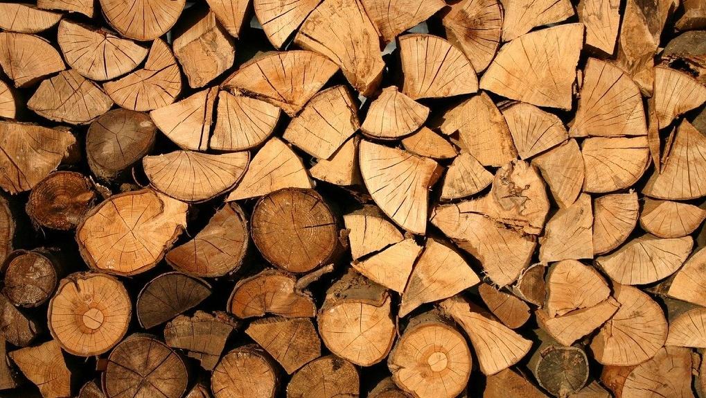 В Омске муниципальный лагерь заказал древесину с избытком и «поделился» с бизнесменом