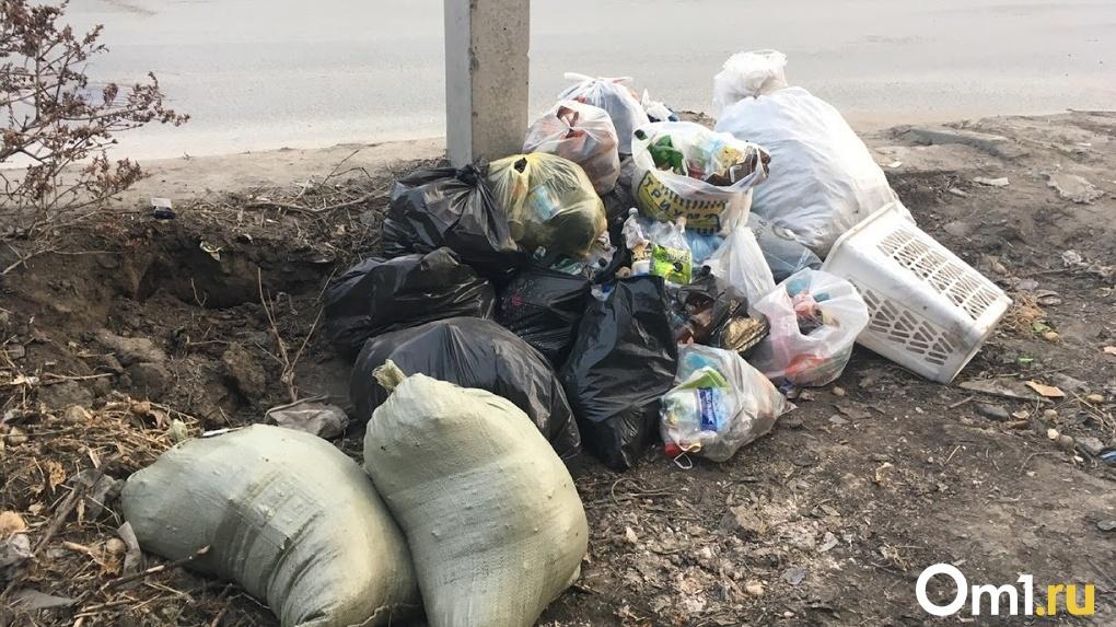 На 30% повысят стоимость вывоза мусора в Новосибирской области