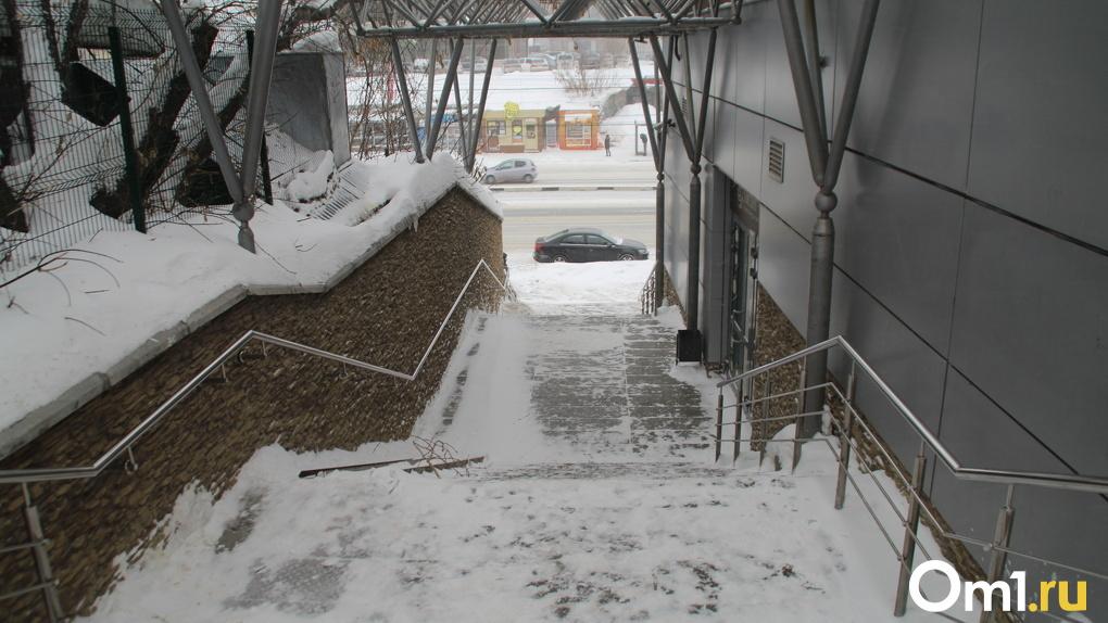 Рабочая неделя в Омске начнется с обильного снегопада и похолодания до -18°