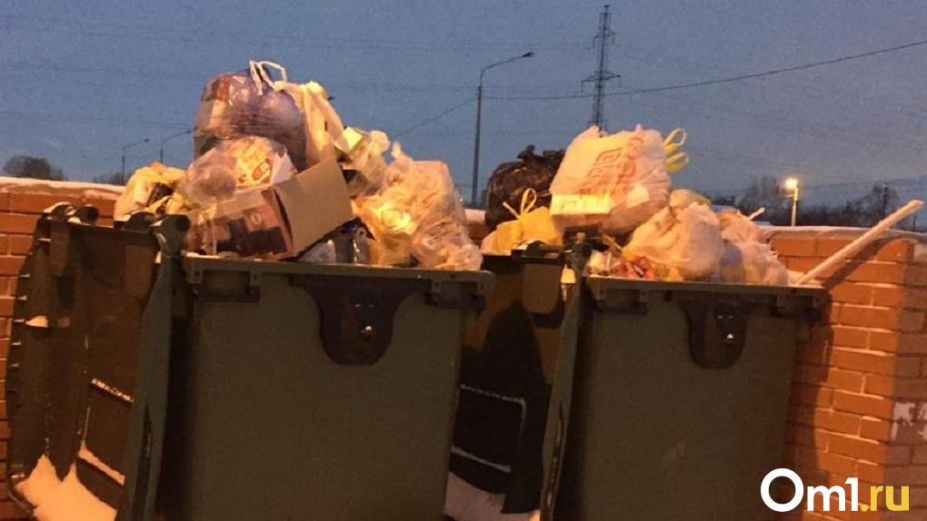В Новосибирске повысят тариф на вывоз мусора