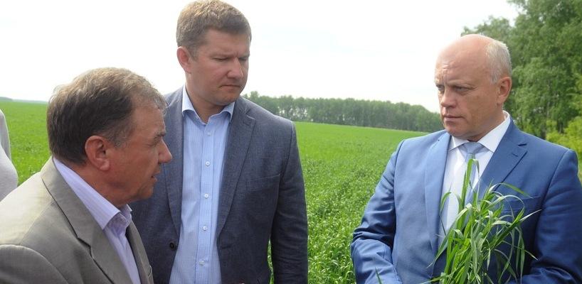 Китай готов купить в Омской области урожай зерна 2017 года
