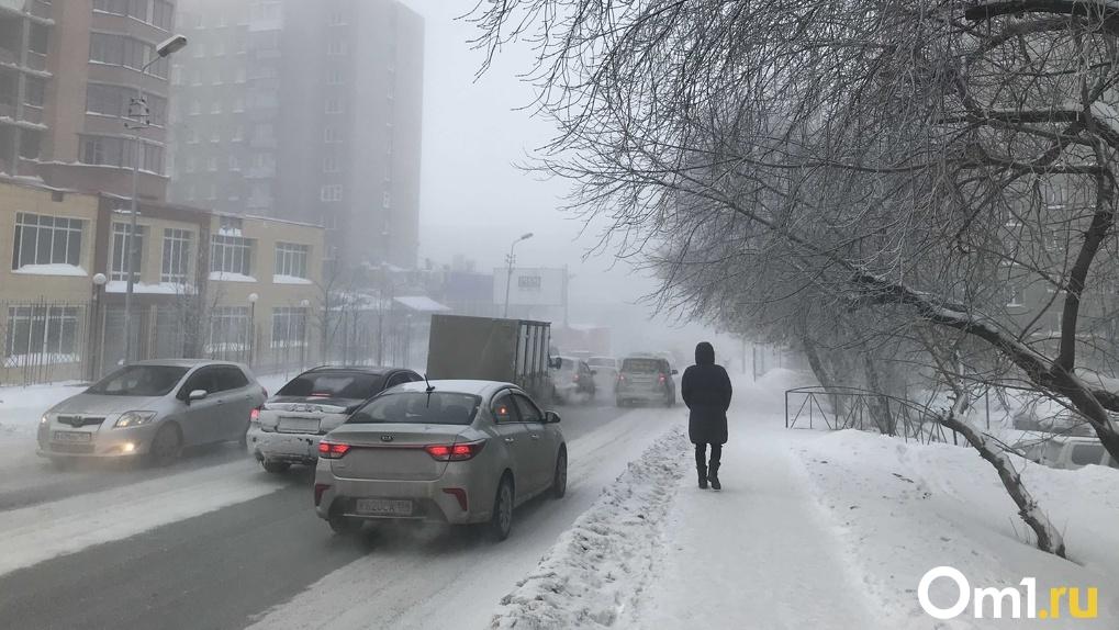 Стало известно, сколько пунктов обогрева будет работать на трассах Новосибирской области во время морозов