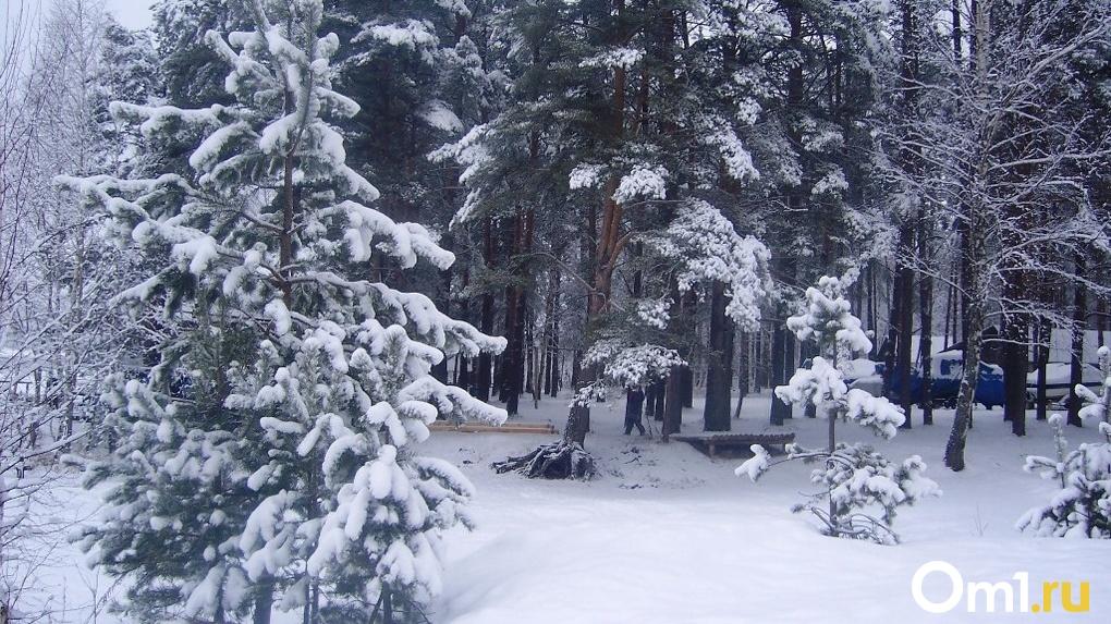 Новосибирск накроет мощная волна холода