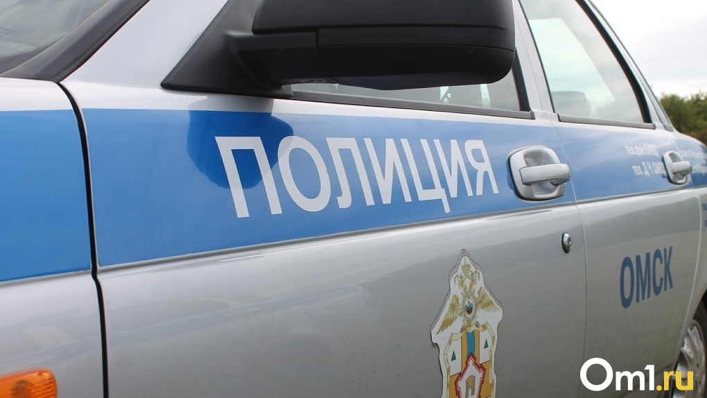 В Омской области иномарка насмерть сбила женщину, переходившую дорогу